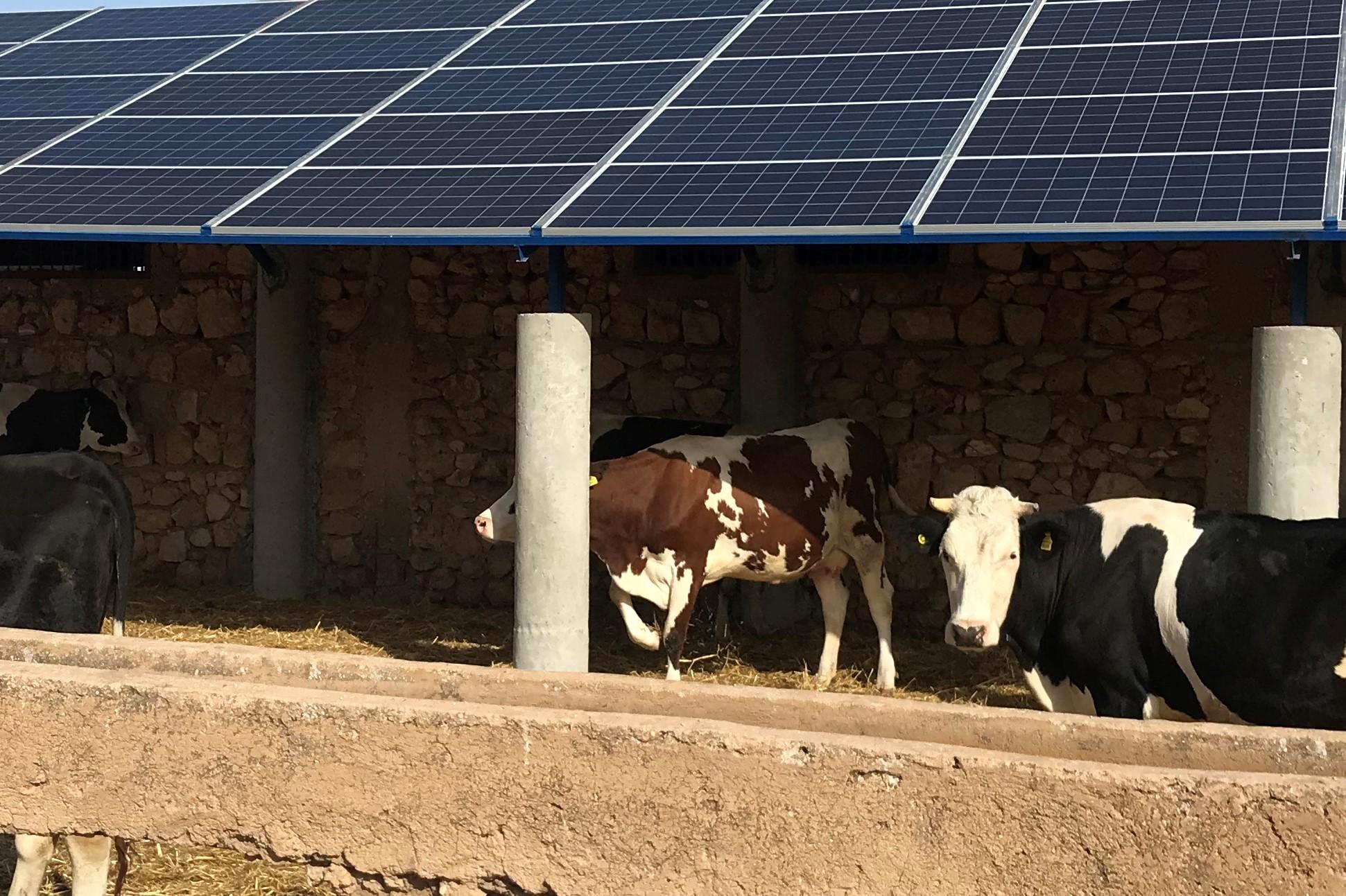 306 NACIRI - Solar extension
